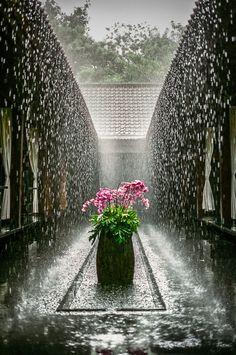 rain in courtyard
