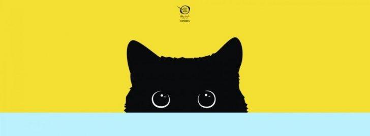 kitty_yellow